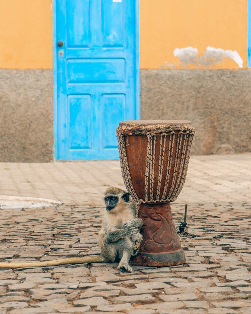 11-819x1024 10 cose da fare e vedere a Capo Verde - Isola di Sal