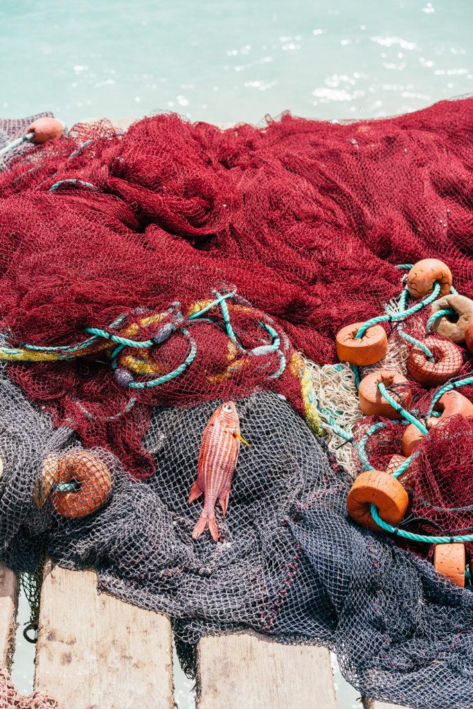 32-683x1024 10 cose da fare e vedere a Capo Verde - Isola di Sal