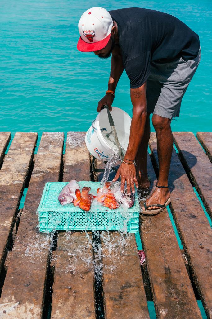 33-683x1024 10 cose da fare e vedere a Capo Verde - Isola di Sal