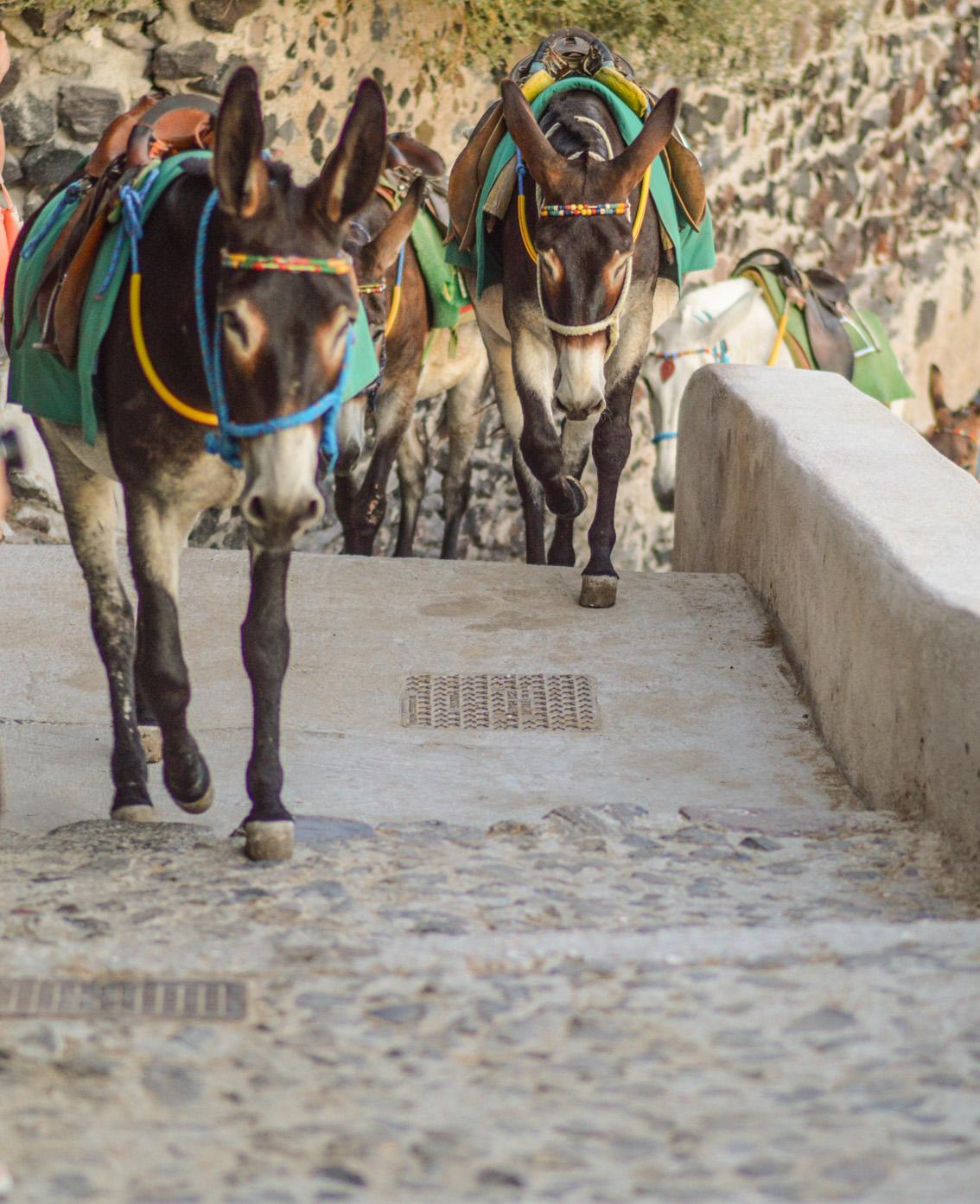 17 Santorini. Travel tips #2