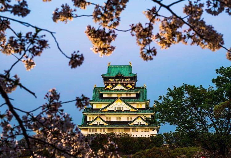 13402728_288878511500212_1214862651_n Cosa mettere in valigia per il Giappone? In partenza con Blueberry Travel.