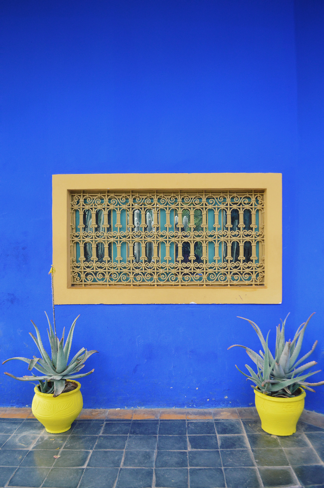 7 Jardin Majorelle - a magical place in Marrakech.