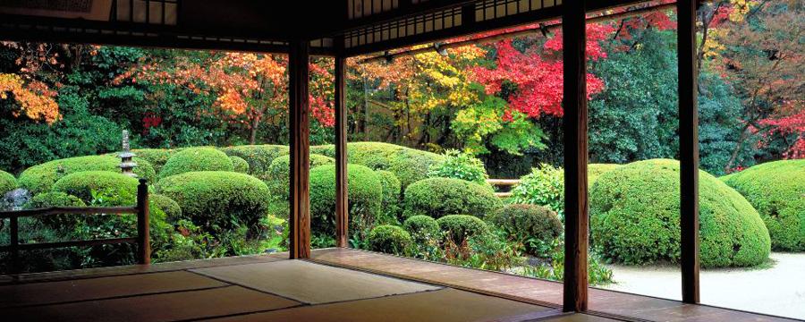 sanctuaires_temples_et_jardins Cosa mettere in valigia per il Giappone? In partenza con Blueberry Travel.