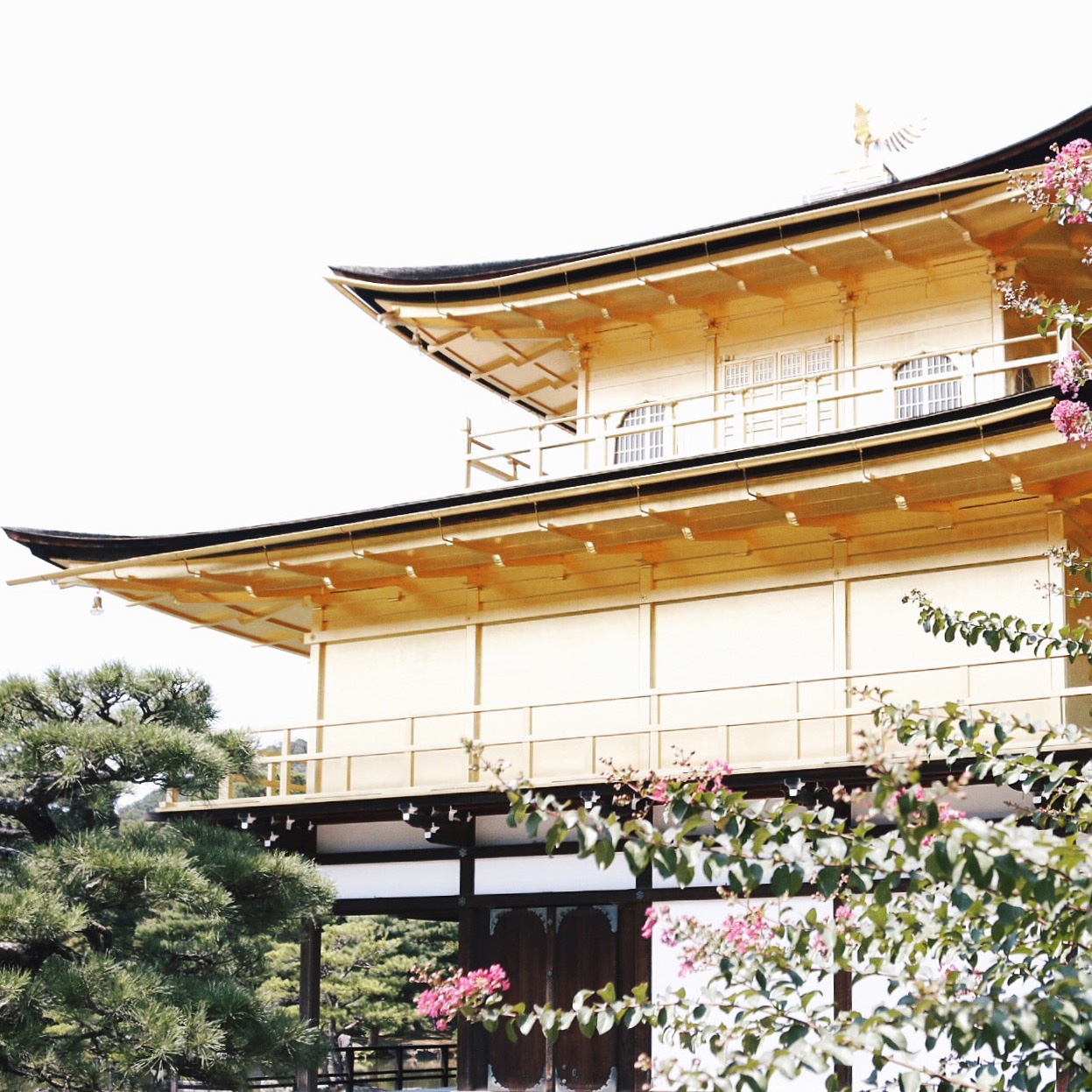 28 #Giappotour with Blueberry Travel: best places to see in Kyoto during a day.