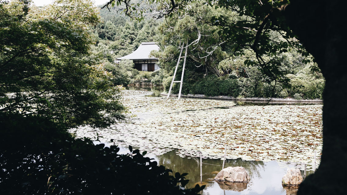 3 #Giappotour with Blueberry Travel: best places to see in Kyoto during a day.