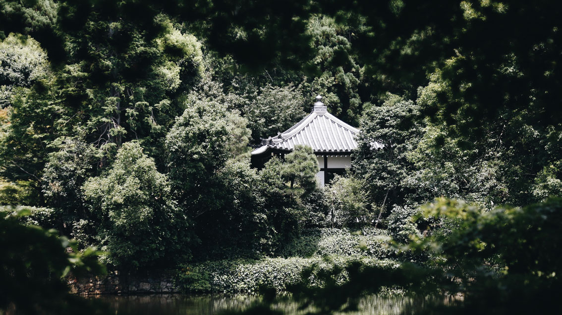 6 #Giappotour with Blueberry Travel: best places to see in Kyoto during a day.