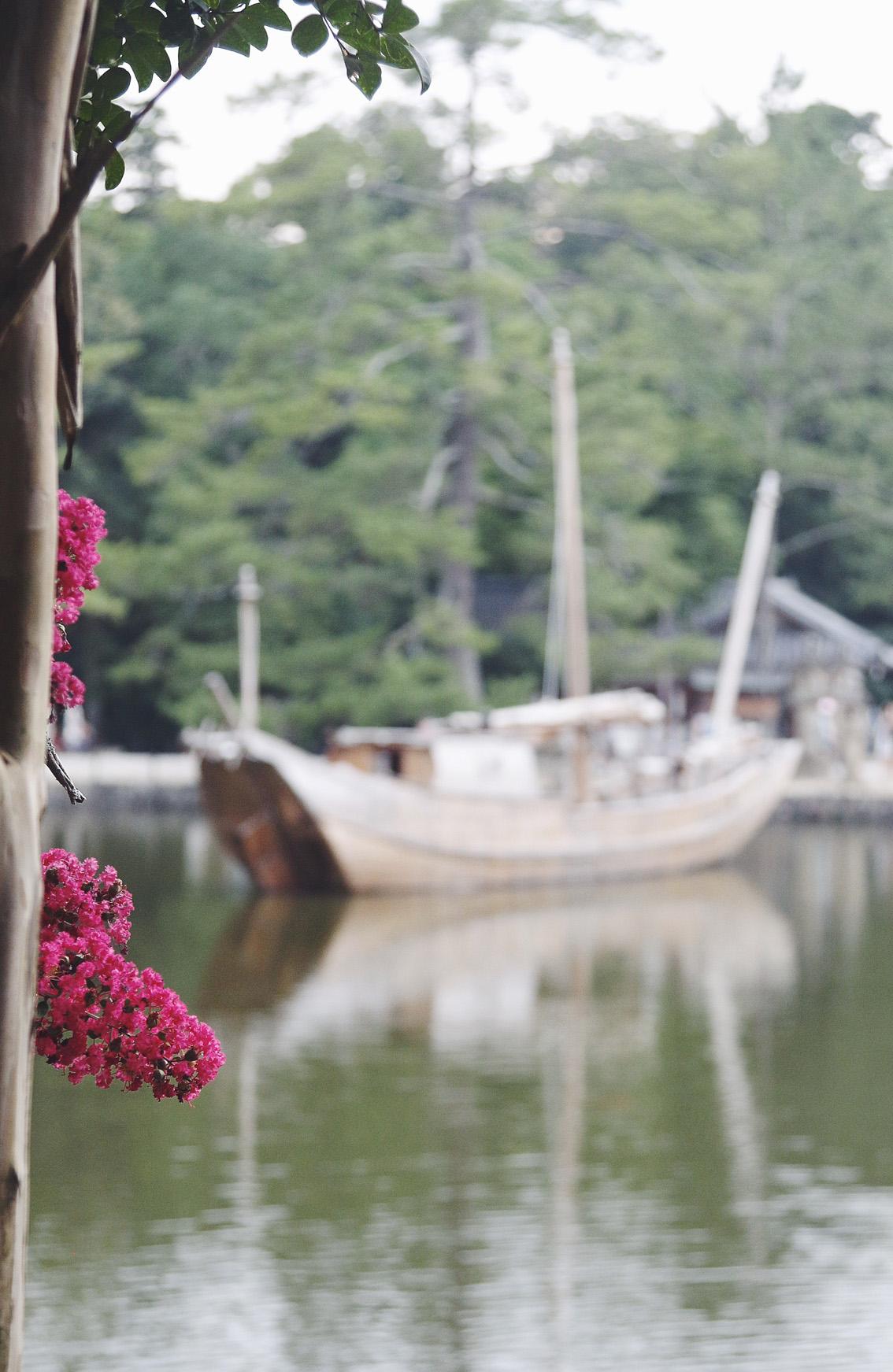 10 #Giappotour with Blueberry Travel day 2: Fushimi Inari & Nara.