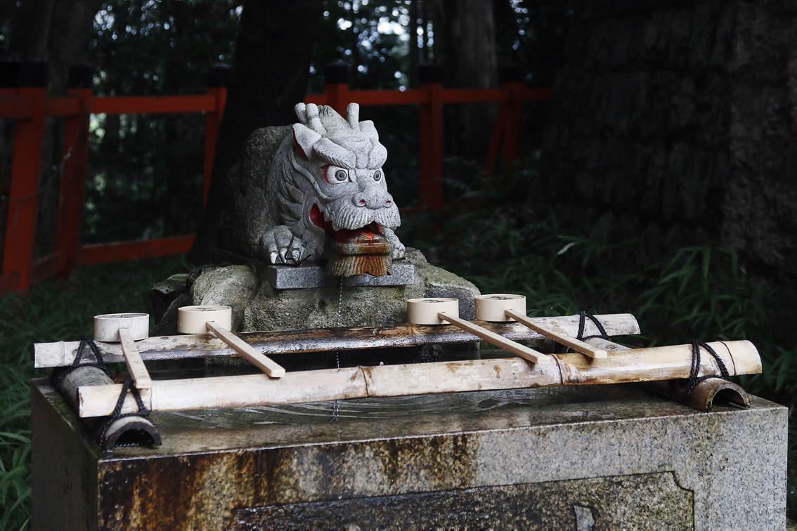 24 #Giappotour with Blueberry Travel day 2: Fushimi Inari & Nara.