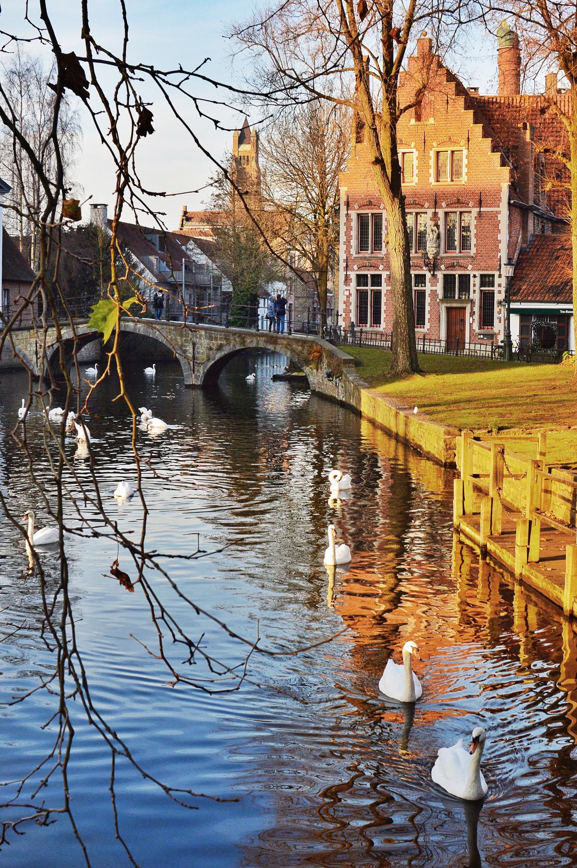 16-2 Un weekend in Belgio. Alla scoperta delle Fiandre: Bruges .