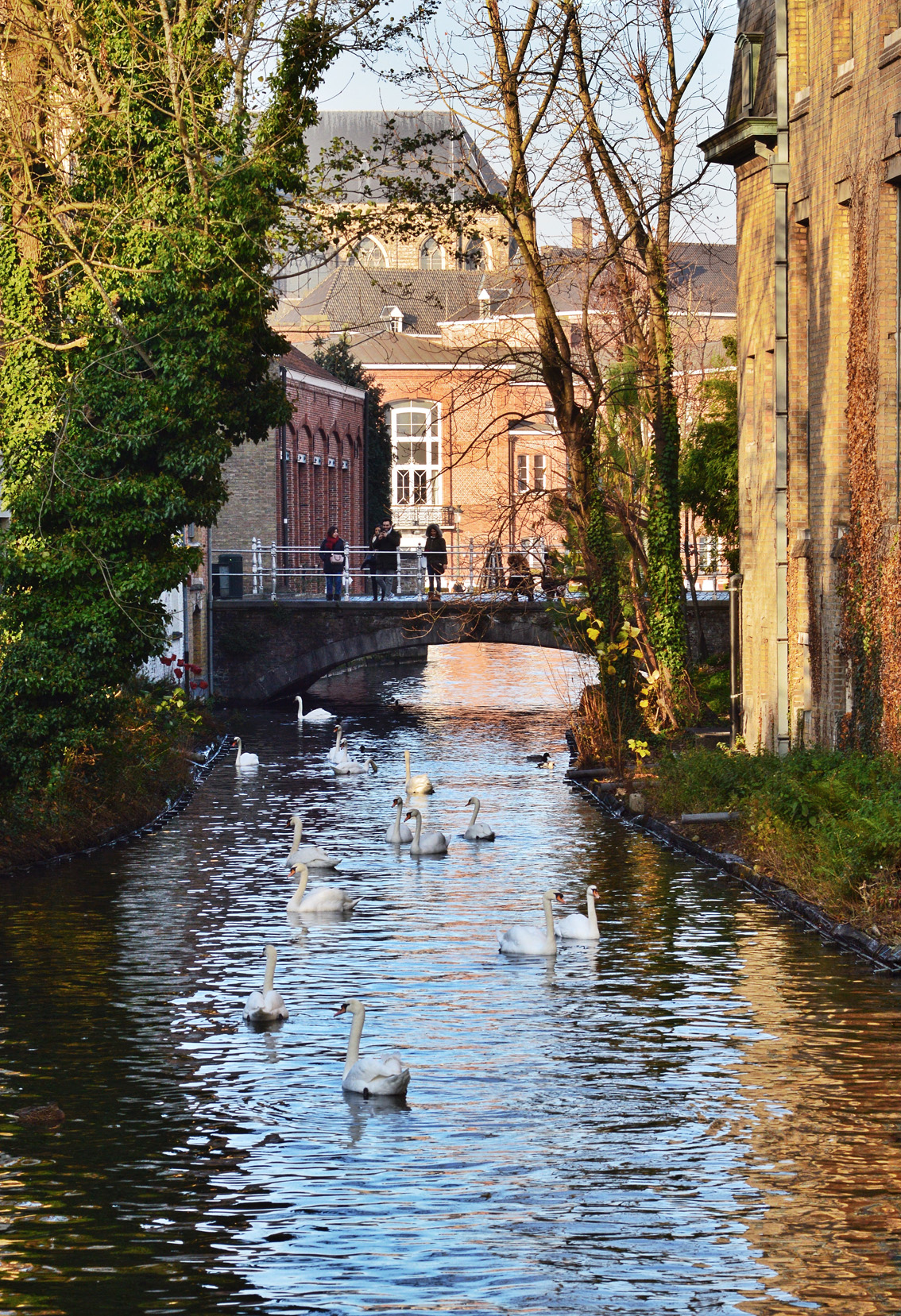 17-1 Un weekend in Belgio. Alla scoperta delle Fiandre: Bruges .