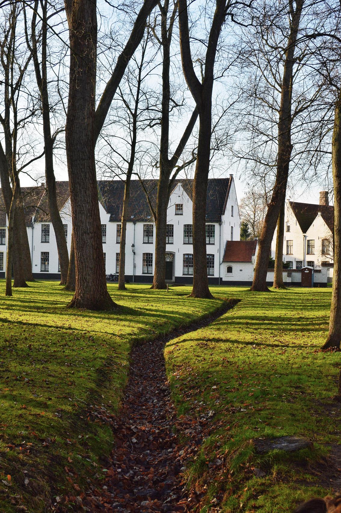 6-3 Un weekend in Belgio. Alla scoperta delle Fiandre: Bruges .