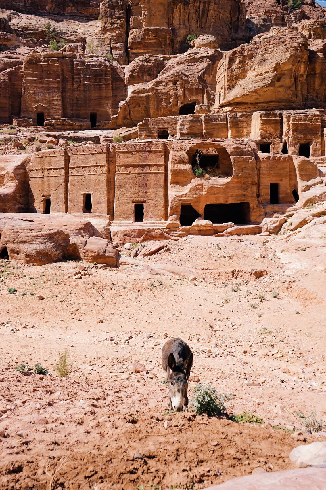 5-3 The Treasury of Petra and the lowest place on Earth. Jordan, second chapter.