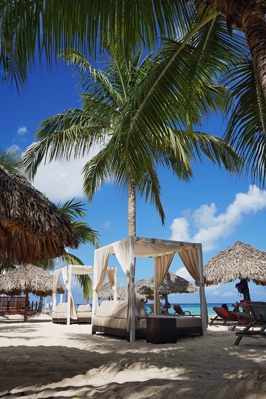 332CA734-4A2C-420D-9F3F-B6D241242068 Viva Dominicus Beach, my Caribbean experience. How can heaven be more beautiful?