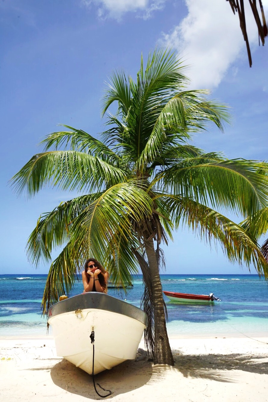 7807DEF8-308C-4F06-B0A2-1318D26C0643 Viva Dominicus Beach, my Caribbean experience. How can heaven be more beautiful?