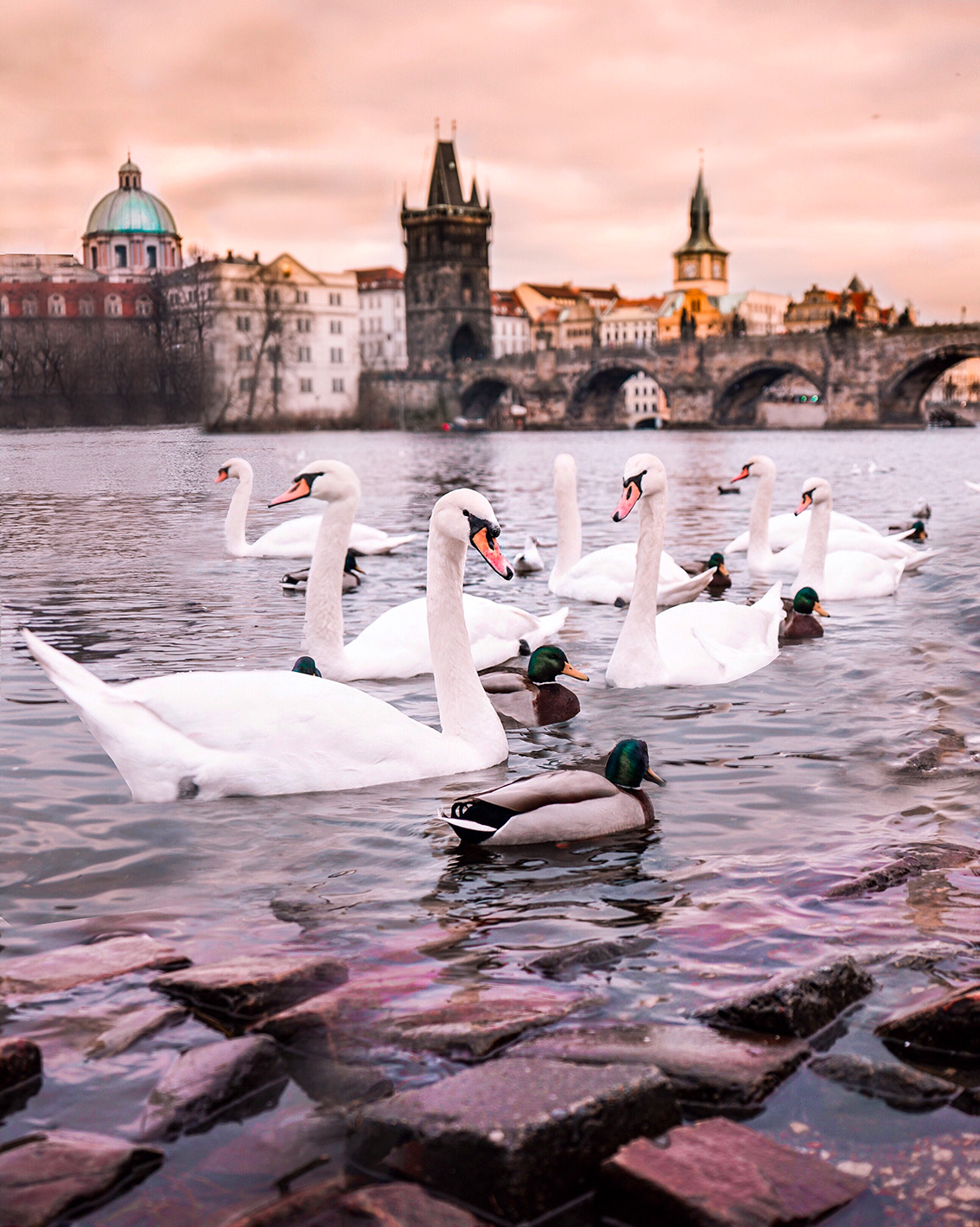 30 Weekend a Praga: 7 cose da vedere, dove dormire, gli indirizzi food e i Mercatini di Natale più belli.