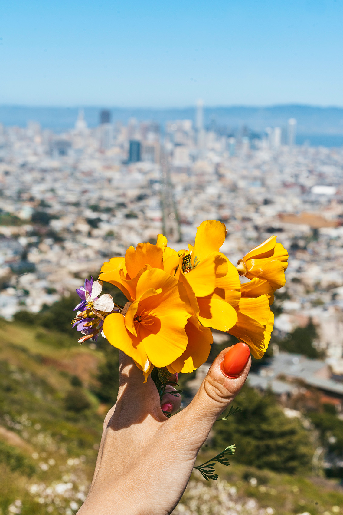 38 10 most instagrammable places in San Francisco you don't have to miss!