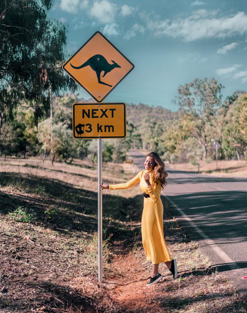 au3-807x1024 Canberra: la città delle possibilità. Cosa fare e vedere nella Capitale dell'Australia.