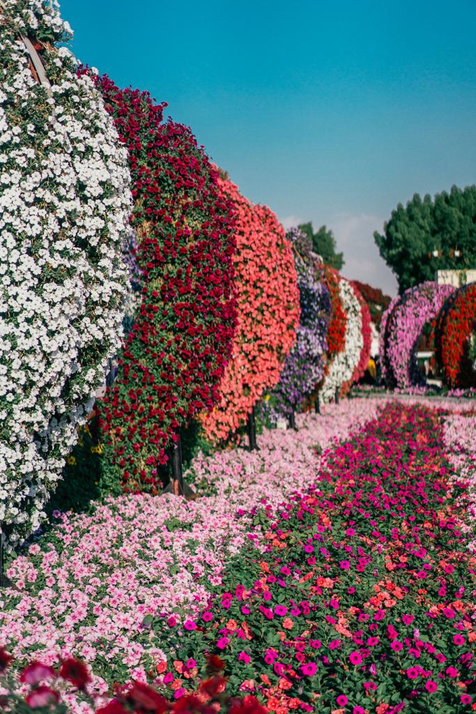 75-683x1024 Dubai: guida della città in un weekend lungo.
