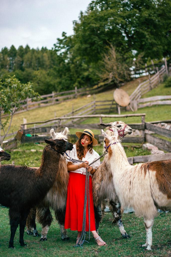 tt11-683x1024 Vacanze in Trentino: le attività imperdibili da provare per nutrire i sensi e l'anima in Paganella.