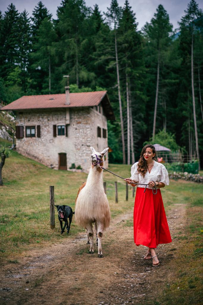 tt14-683x1024 Vacanze in Trentino: le attività imperdibili da provare per nutrire i sensi e l'anima in Paganella.
