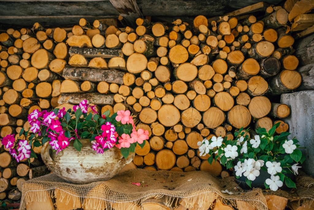 tt36-1024x683 Vacanze in Trentino: le attività imperdibili da provare per nutrire i sensi e l'anima in Paganella.