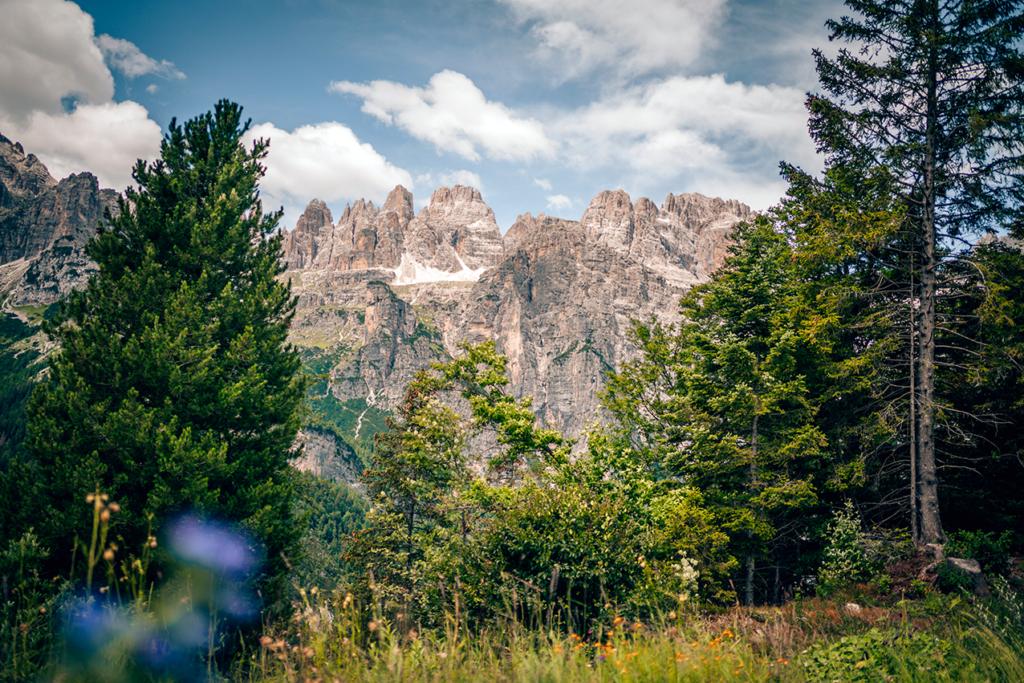 tt53-1024x683 Vacanze in Trentino: le attività imperdibili da provare per nutrire i sensi e l'anima in Paganella.