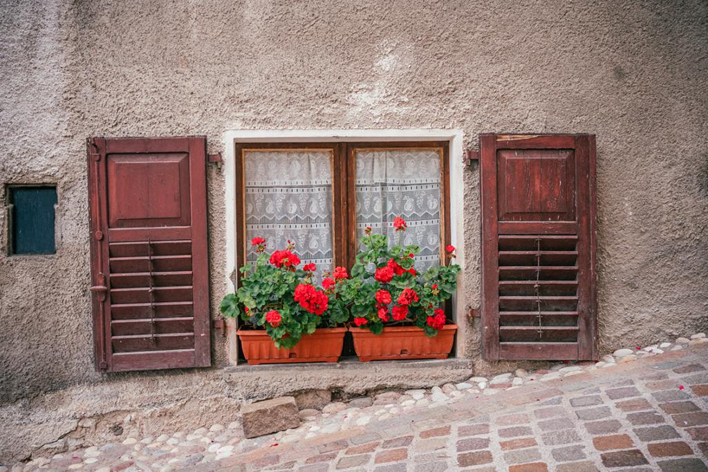 tt74-1024x683 Vacanze in Trentino: le attività imperdibili da provare per nutrire i sensi e l'anima in Paganella.